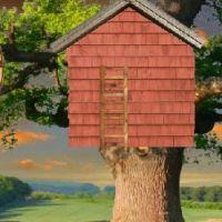 Zbuduj Domek Na Drzewie