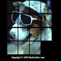 Psia układanka